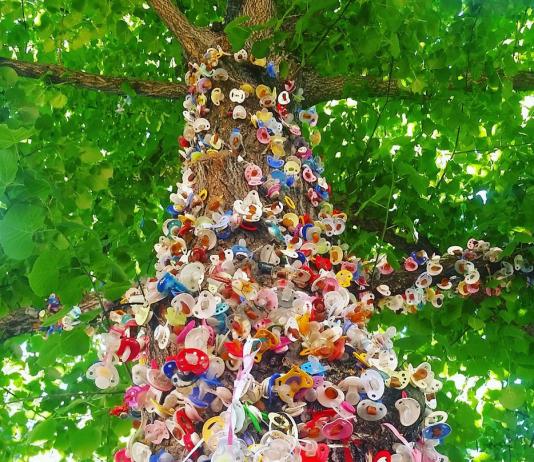 Schnullerbaum: Schnullerbäume gibt es mittlerweile in ganz Deutschland
