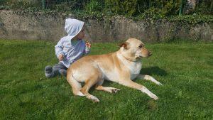 Kind und Hund sitzen auf der Wiese