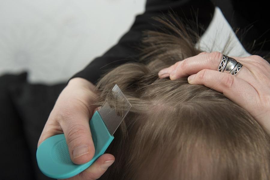 Läuse Kamm Haare