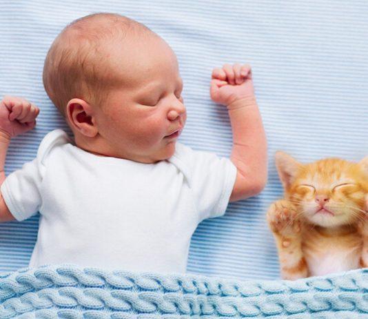 Katzen und Babys zusammenführen: Baby mit Kätzchen im Bett