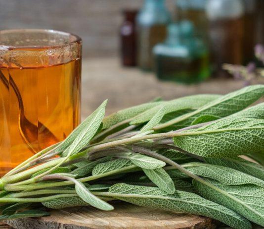 Abstillen mit Tee: Salbei hemmt die Milchproduktion