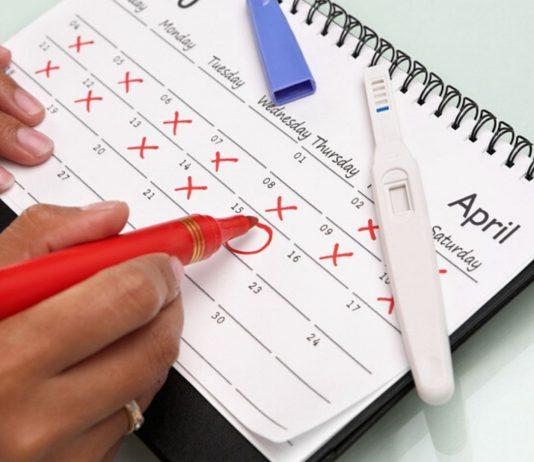 Kalender mit Schwangerschafftstest: Mit unseren Tipps kannst du die Follikelreifung unterstuetzen