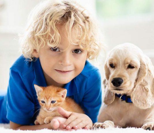Super gegen Langeweile zuhause: Aufgaben und Rätsel für Kinder zu Katze, Hund und anderen Haustieren.
