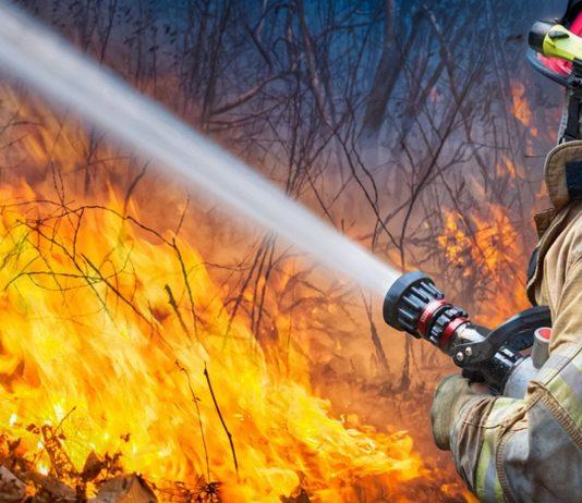 Die Eltern haben mit ihrer Babyparty einen riesigen Waldbrand verursacht.