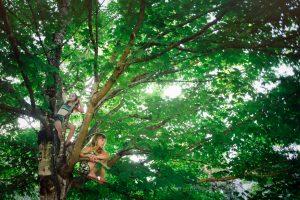 Mädchen klettern auf Bäume und schmieden Pläne!