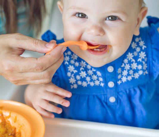 Zum Beikost-Start stellt sich die Frage: Welches Fleisch ist für Babybrei geeignet?