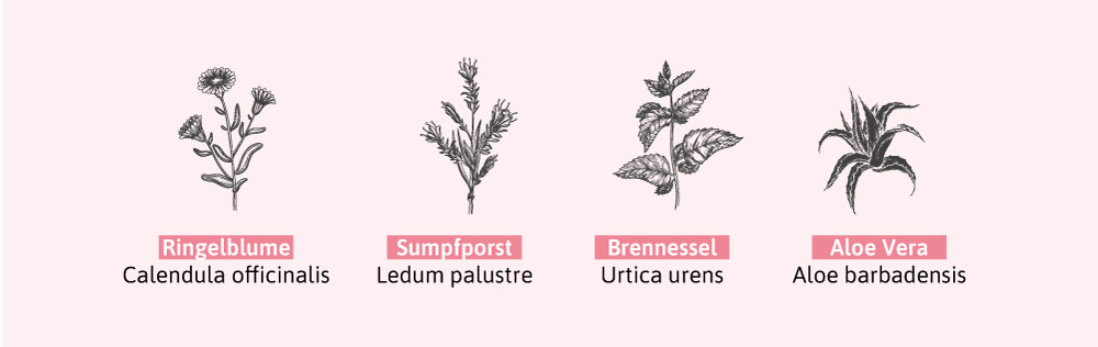 Pflanzenstoffe, die eine hautberuhigende Wirkung haben