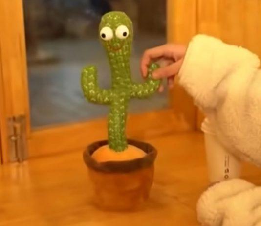 Dieser niedliche Kaktus singt in Kinderzimmern über Drogenkonsum und Selbstmord. Foto: Youtube 仙人掌🌵影片