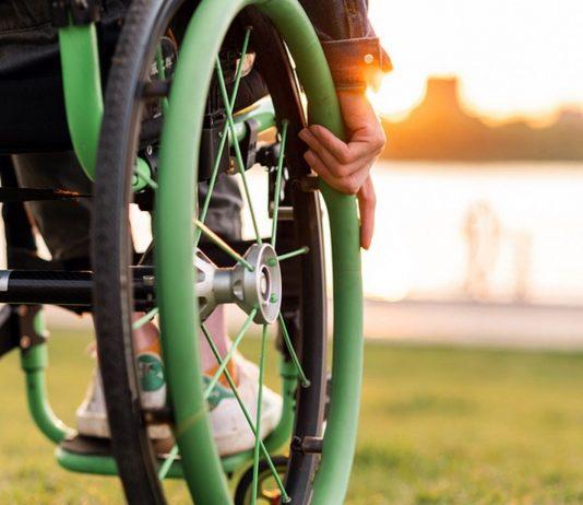 Manche bewegen sich auf ihren Beinen fort, andere benötigen dafür Räder.