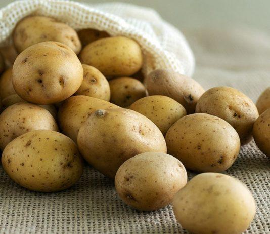 Bereits ab dem fünften Lebensmonat kannst du deinem Baby Kartoffeln in kleinen Mengen anbieten.